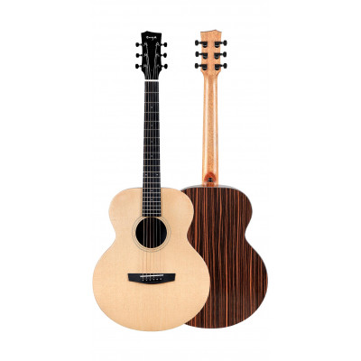 Enya EA-X1PRO/EQ + набор гитариста